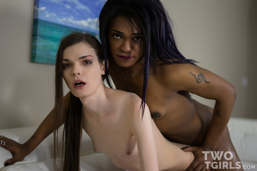 Shemale Kira Crash and Misty Foxx
